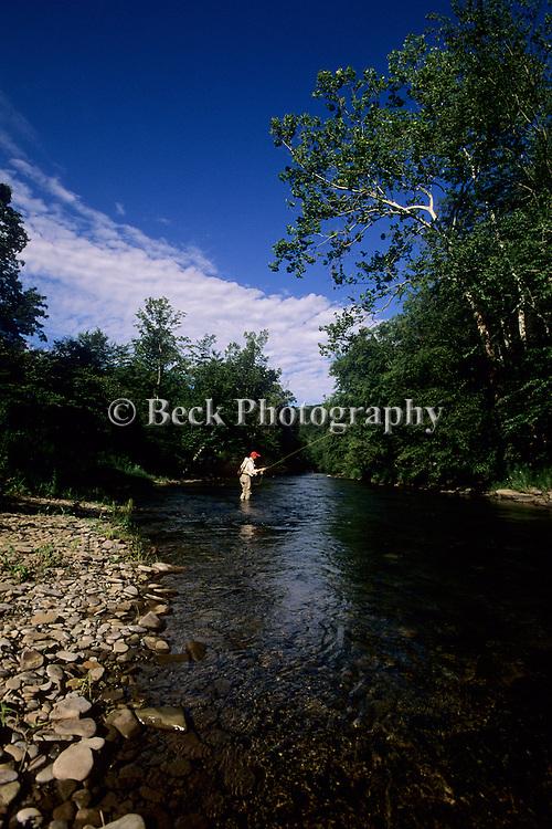 Summer trout fishing on Kettle Creek
