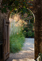 Sunlight on ornamental grass (Stipa gigantea) seen through doorway in wall in Gary Ratway garden