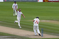 Stuart Meaker of Sussex celebrates taking the wicket of Glamorgan batsman, David Lloyd during Sussex CCC vs Glamorgan CCC, LV Insurance County Championship Group 3 Cricket at The 1st Central County Ground on 5th July 2021