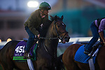 DEL MAR, CA - OCTOBER 28:  Ballagh Rocks, owned by Donegal Racing and trained by William I. Mott, exercises in preparation for Breeders' Cup Mile at Del Mar Thoroughbred Club on October 28, 2017 in Del Mar, California. (Photo by Alex Evers/Eclipse Sportswire/Breeders Cup)