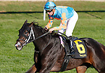 October 17, 2015:  I'm Already Sexy and jockey Florent Geroux win the 8th race, The Dromoland Allowance $66,000.   Candice Chavez/ESW/CSM