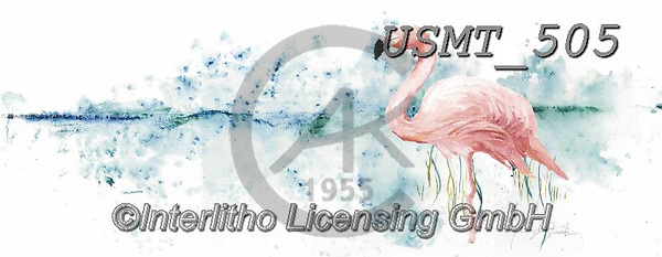 Malenda, REALISTIC ANIMALS, REALISTISCHE TIERE, ANIMALES REALISTICOS, paintings+++++,USMT505,#a#, EVERYDAY
