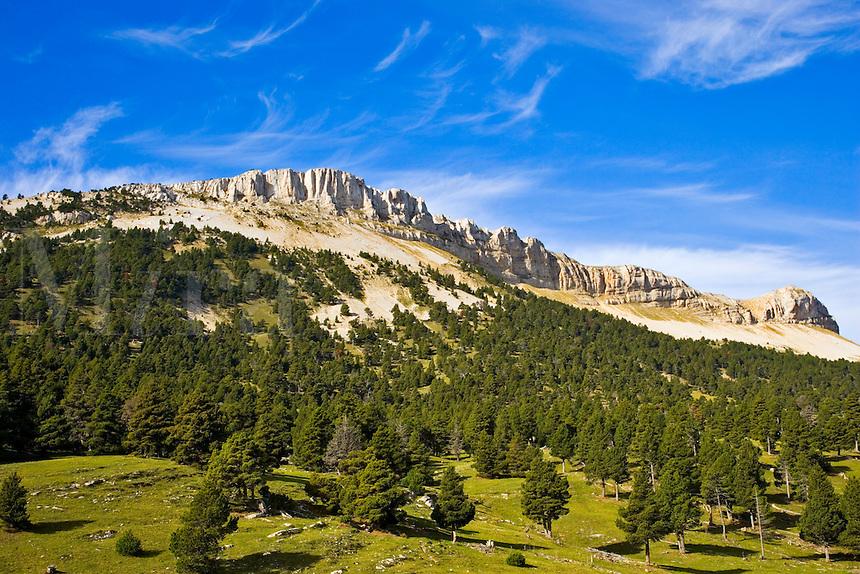 La Montagnette in the Vallon du Combeau. Vercors. Drome. Diois. France.