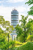 Aussichtsturm Friedenswarte und Weinreben im Bürgerpark Marienberg, Brandenburg an der Havel, Brandenburg, Deutschland