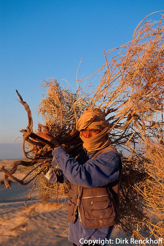 Brennholz, Dünen bei Douz, Tunesien