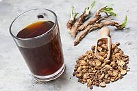Wegwarten-Kaffee, Wegwartenkaffee, Wegwarte-Wurzel, Wegwarten-Wurzel, Wurzel, Wurzeln, Wurzelernte, aus Wurzeln von Wegwarte wird Kaffee gemacht, Zichorienkaffee, Muckefuck, Ersatzkaffee, Wurzelkaffee, Kaffee, Kaffeeersatz. Gemeine Wegwarte, Gewöhnliche Wegwarte, Zichorie, Cichorium intybus, Chicory, Common chicory, root, roots, coffee substitute, La Chicorée sauvage, Chicorée amère, Chicorée commune, Chicorée intybe