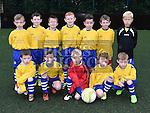 Duleek Underage Teams