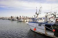 - Pila, comune Porto Tolle, nel delta del fiume Po in provincia di Rovigo, porto peschereccio<br /> <br /> - Pila, municipality of Porto Tolle, delta of river Po in the province of Rovigo, the fishing port