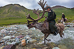 """Tsaatan translates to """"people of the reindeer."""" Reindeer provide food, clothing, and transportation for this endangered people. Mongolia"""