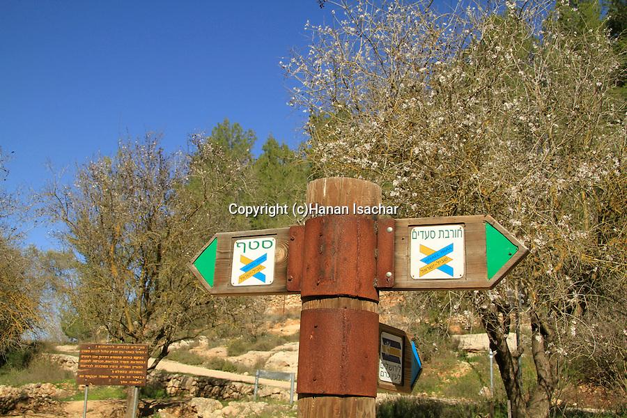 Israel, Jerusalem mountains, Israel Trail in Ein Handak