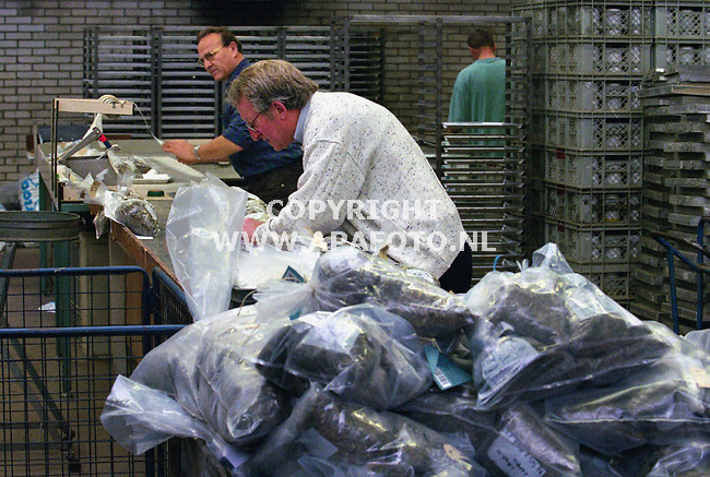 oosterbeek 110700 op het blgg komen op dit moment de kuilgrasmonsters met containers tegelijk binnen, topdrukte dus. <br />foto frans ypma APA-foto