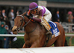 """October 02, 2015:  Gomo and jockey Mario Gutierrez win the 64th running of The Darley Alcibiades (Grade 1) $400,000 """"Win and You're In Juvenile Fillies Division"""" at Keeneland for trainer Doug O'Neill and owner Reddam Racing.  Candice Chavez/ESW/CSM"""