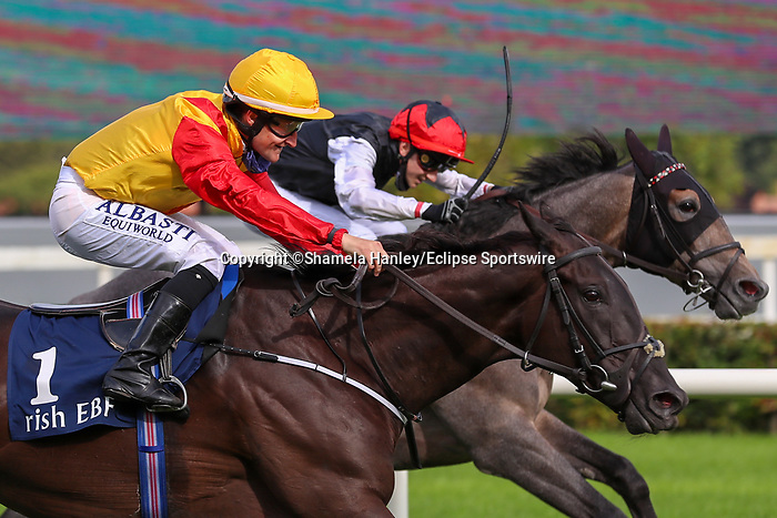 September 11, 2021: Ever Present (IRE) #1, ridden by jockey Shane Foley wins the Petingo Handicap on the turf on Irish Champions Weekend at Leopardstown Racecourse in Dublin, Ireland on September 11th, 2021. Shamela Hanley/Eclipse Sportswire/CSM
