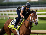 LOUISVILLE, KY - MAY 02: Audible gallops in preparation for the Kentucky Derby at Churchill Downs on May 2, 2018 in Louisville, Kentucky. (Photo by Alex Evers/Eclipse Sportswire/Getty Images)