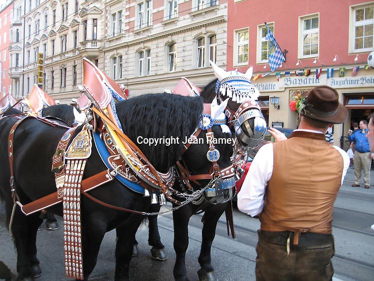 Horses in Oktoberfest attire - Munich, Germany