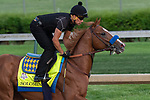 LOUISVILLE, KY - MAY 3:  Solomini, trained by Bob Baffert, exercises in preparation for the Kentucky Derby at Churchill Downs on May 3, 2018 in Louisville, Kentucky. (Photo by Eric Patterson/Eclipse Sportswire/Getty Images)
