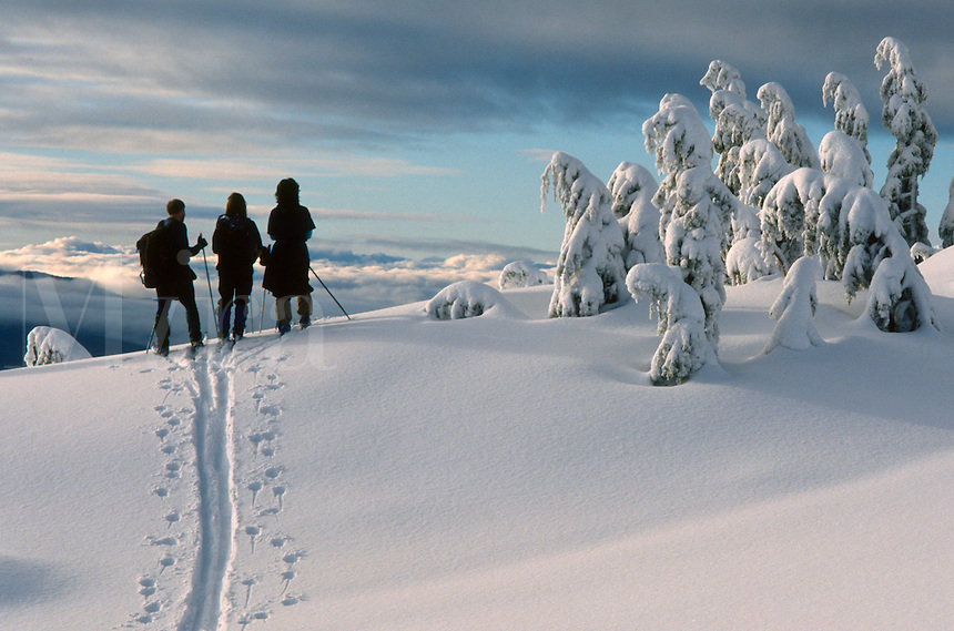Back country skiers enjoy a hard-earned view from a ridge on Douglas Island in southeast Alaska. M
