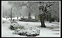 SNOW : Falkirk
