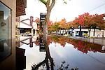 Around Town: Fall in Los Altos