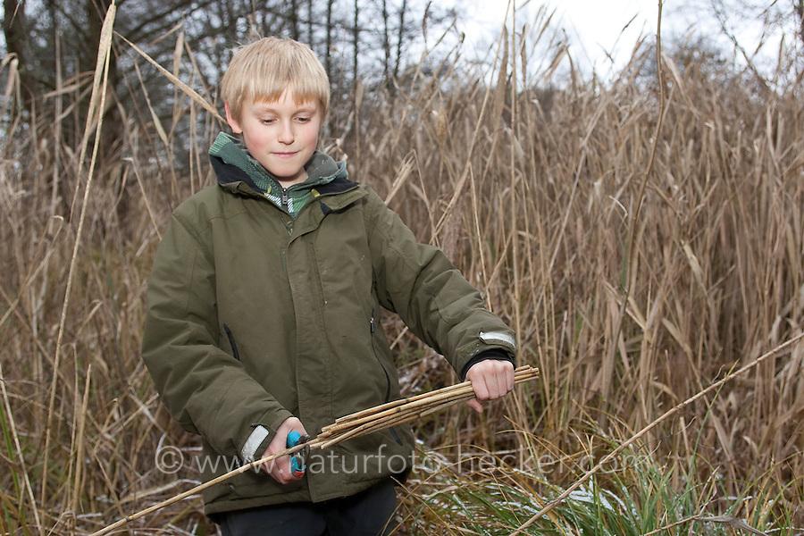 Kind, Junge baut eine Nisthilfe für Wildbienen. Dazu wird Schilf auf Länge geschnitten und in einer Konservendose gebündelt. In die hohlen Stängeln können Wildbienen ihre Eier legen.