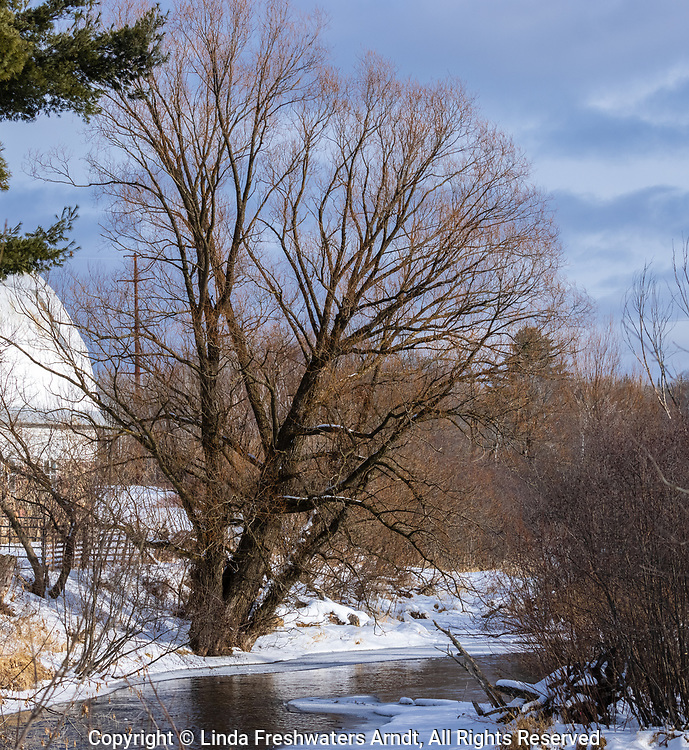 A northern Wisconsin farm bordering the Chippewa River.