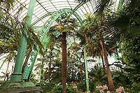 Belgique, Bruxelles, Laeken, le domaine royale du château de Laeken, les serres de Laeken durant la période d'ouverture au public au printemps, la serre du Congo // Belgique, Bruxelles, Laeken, the royal castle domain, the greenhouses of Laeken in spring, inside the Greenhouse of Congo.