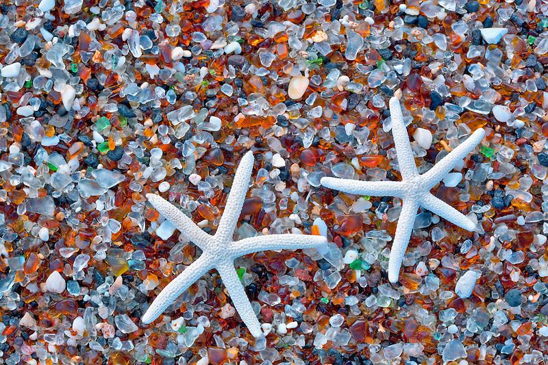 Starfish shell at Glass Beach. Kauai, Hawaii.