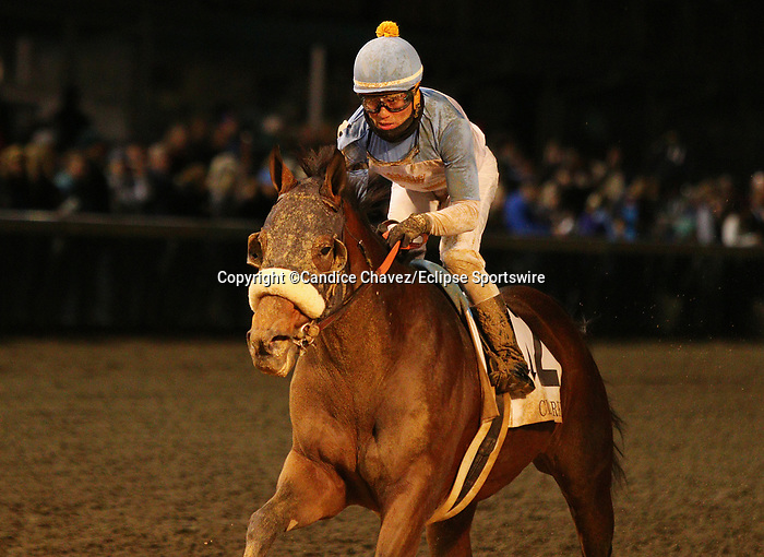 November 29, 2019 : #2 Tom's D'Etat and jockey Joel Rosario win the 145th running of the Clark Grade 1 $600,000 guaranteed presented by Norton Healthcare for owner G M B Racing and trainer Ablert STall Jr. at Churchill Downs in Louisville, KY on November 29, 2019.  Candice Chavez/ESW/CSM