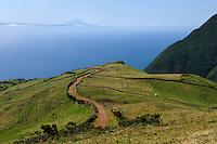 Weiden im Südosten auf der Insel Sao Jorge, Azoren, Portugal