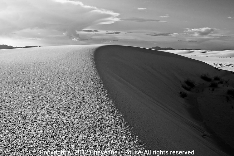 Texture and Form - White Sands, New Mexico (BW)