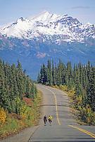 Bicyclists on the Denali Park Road, Denali National Park, Alaska.