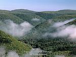 Rising morning mist at Lebo Vista in Lycoming County, Pennsylvania