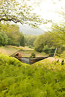 Red haired woman laying in hammock