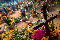 A black cross is seen at a flower-decorated grave during the Day of the Dead festivities in Oaxaca, Mexico, 1 November 2019. Day of the Dead (Día de Muertos), a religious holiday combining the death veneration rituals of Pre-Hispanic cultures with the Catholic practice, is widely celebrated throughout all of Mexico. Based on the belief that the souls of the departed may come back to this world on that day, people gather together while either praying or joyfully eating, drinking, and playing music, to remember friends or family members who have died and to support their souls on the spiritual journey.