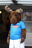 Maskottchen der TSG Hoffenheim<br /> TSG 1899 Hoffenheim vs. Galatasaray Istanbul, Carl-Benz Stadion Mannheim<br /> *** Local Caption *** Foto ist honorarpflichtig! zzgl. gesetzl. MwSt. Auf Anfrage in hoeherer Qualitaet/Aufloesung. Belegexemplar an: Marc Schueler, Am Ziegelfalltor 4, 64625 Bensheim, Tel. +49 (0) 6251 86 96 134, www.gameday-mediaservices.de. Email: marc.schueler@gameday-mediaservices.de, Bankverbindung: Volksbank Bergstrasse, Kto.: 151297, BLZ: 50960101