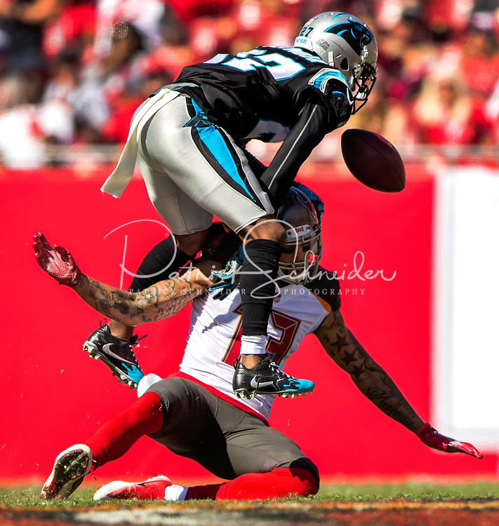 Photography of the Carolina Panthers v. The Tampa Bay Bucs at Raymond James Field in Tampa, Florida.<br /> <br /> Charlotte Photographer - PatrickSchneiderPhoto.com