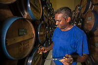 France, île de la Réunion, côte nord est, Saint André, cave de rhum de la distillerie Savanna - Le maitre de chai dans le chai de vieillissement // France, Ile de la Reunion (French overseas department), north east coast, Saint Andre, rhum cellar of Savanna distillery  , cellar master in the maturation storehouse<br /> AUTO n° 2014-116