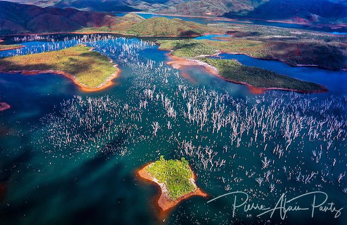 Forêt noyée, sud calédonien