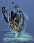 2014 - Michael Uthoff - Bayadere - Mixed 3D