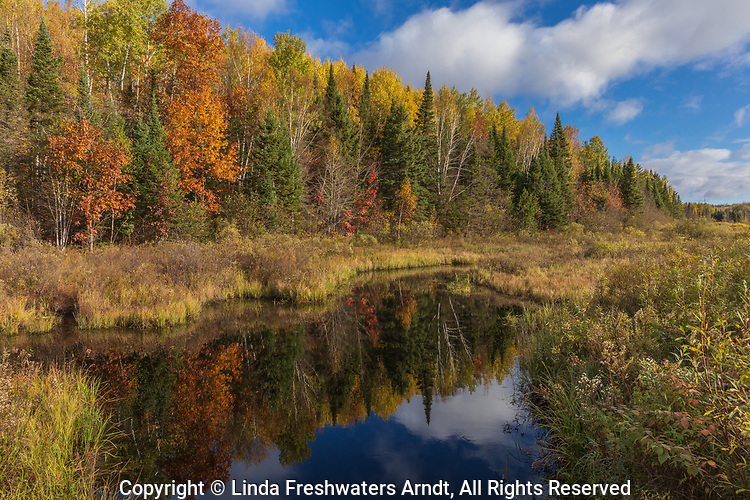 A pretty autumn view from a forest road in northern Wisconsin.