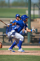 Kansas City Royals Cristhian Vasquez (28) during an instructional league game against the San Francisco Giants on October 23, 2015 at the Papago Baseball Facility in Phoenix, Arizona.  (Mike Janes/Four Seam Images)
