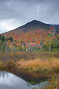 Wetlands area along the Franconia Brook Trail during the autumn months in the Pemigewasset Wilderness of Lincoln, New Hampshire USA. Storm clouds can be seen over the southern end of Owls Head is in the distance. A spur line of the old East Branch & Lincoln Logging Railroad (1893-1948) traveled through this area.