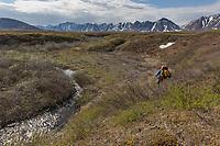 Brooks Range, Arctic, Alaska.