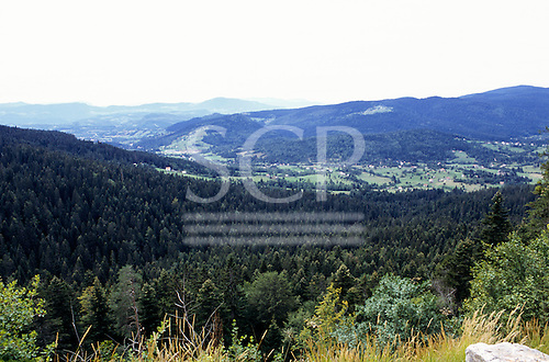Bosnia. Rural landscape with scattered farms and pine trees near the Serbian border.