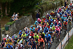 The peloton during La Fleche Wallonne 2020, running 202km from Herve to Mur de Huy, Belgium. 30th September 2020.<br /> Picture: ASO/Gautier Demouveaux   Cyclefile<br /> All photos usage must carry mandatory copyright credit (© Cyclefile   ASO/Gautier Demouveaux)