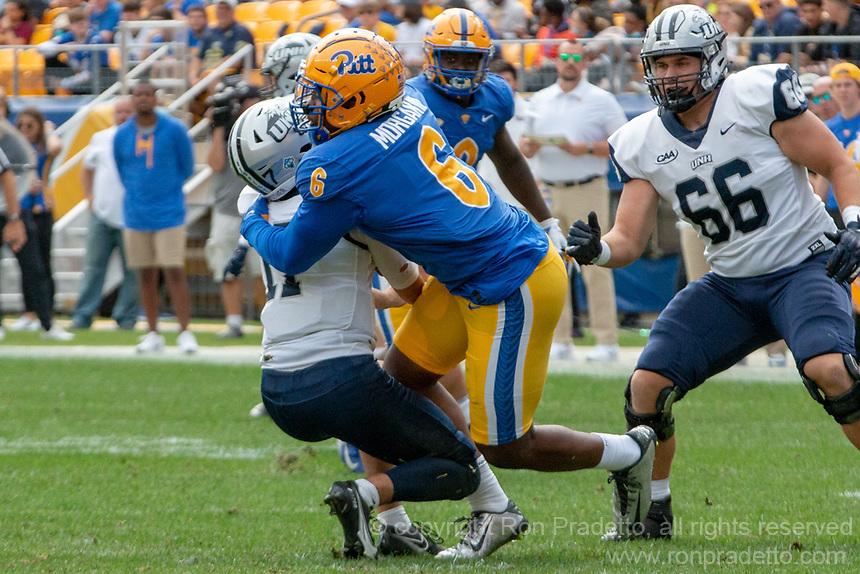Pitt defensive lineman John Morgan sacks New Hampshire quarterback Bret Edwards. The Pitt Panthers defeated the New Hampshire Wildcats 77-7 at Heinz Field, Pittsburgh, Pennsylvania on September 25, 2021.