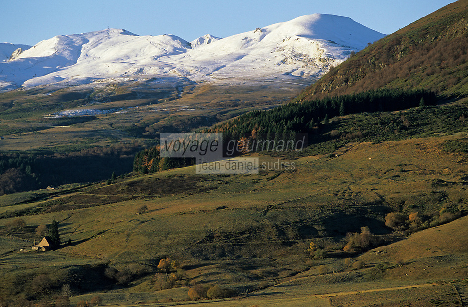 Europe/France/Auverne/63/Puy-de-Dôme/Parc Naturel Régional des Volcans/Les Monts Dore: Paturages et buron en fond le massif du Sancy (1885mètres) enneigé