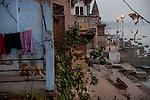 A monkey walk passes a terrace at a house in Varanasi, Uttar Pradesh, India.
