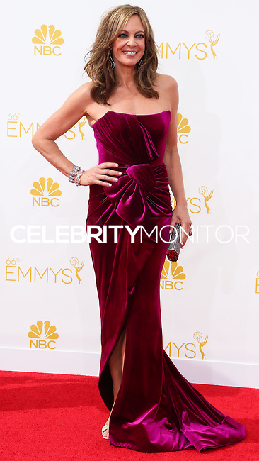 LOS ANGELES, CA, USA - AUGUST 25: Actress Allison Janney arrives at the 66th Annual Primetime Emmy Awards held at Nokia Theatre L.A. Live on August 25, 2014 in Los Angeles, California, United States. (Photo by Celebrity Monitor)