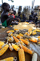 ETHIOPIA, Gambela, village Gog Dipach, maize harvest, family trash corn by hand / AETHIOPIEN, Gambela, Dorf GOG DIPACH der Ethnie ANUAK, Maisernte, Familie trennt Maiskoerner vom Kolben mit der Hand